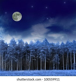 Forest and night sky