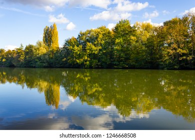Forest at Oise river in Auvers-sur-Oise village, France