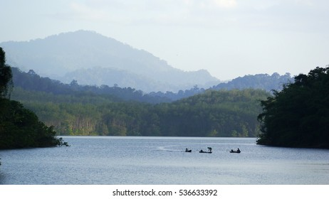 forest on dam 3 boat