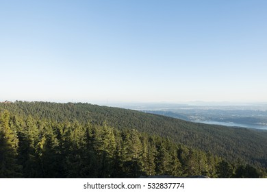 In the forest on Dog Mountain in Mount Seymour Provincial Park looking down into Vancouver, British Columbia, Canada