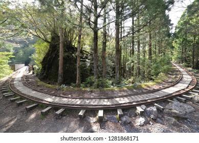 Forest orbit yakushima railroad track