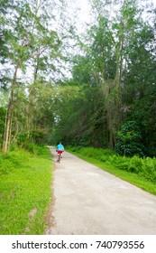 Forest park for exercising biking and running