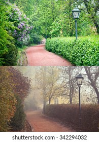 Forest Park in two different seasons - Spring and Autumn