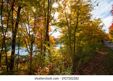 Forest path along a lake in Gatineau Park in autumn, Gatineau, Quebec, Canada