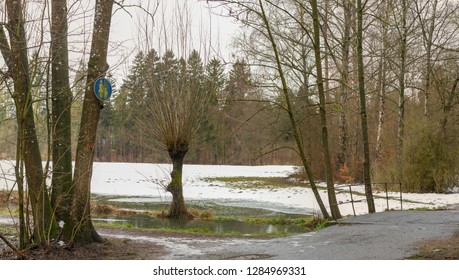 Forest path at a small stream with snow and flooded meadows