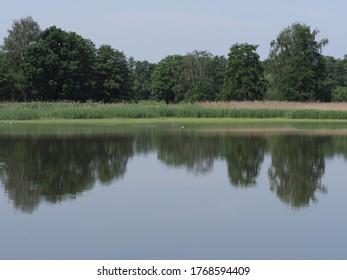 Der Wald spiegelt sich in den Gewässern des künstlichen Brutteichs in der europäischen Goczalkowice Stadt im schlesischen Bezirk in Polen, klaren blauen Himmel im Jahr 2020 warm sonnigen Frühlingstag im Juni.