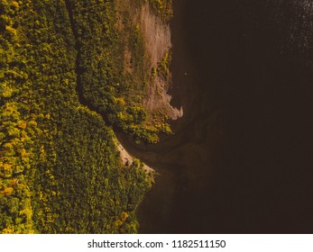 Forest river. Autumn landscape. Taiga forest from aerial view