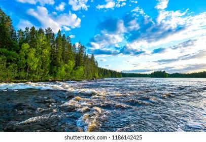 Forest river flow landscape. River flowing in forest. Forest river rapids panorama. Forest river water flow