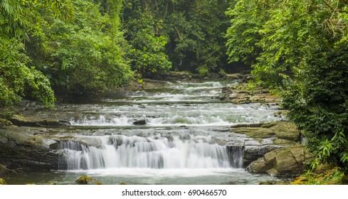 Forest river flows through the rock in Khasi Hills, Meghalaya, I