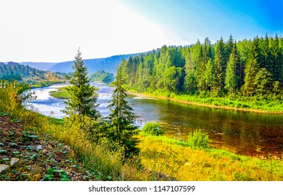 Forest river landscape. Forest river valley panorama. Summer green forest river view