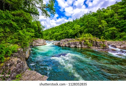 Forest river landscape. Wild river flow in deep forest. Deep forest wild river cascade flowing