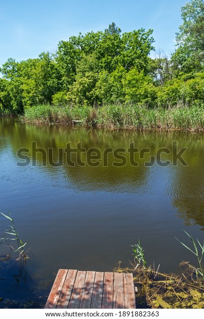 forest-river-on-warm-spring-600w-1891882