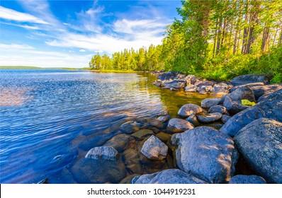 Forest river shore boulders landscape