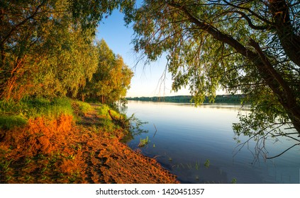 Forest river shore in evening. Evening river forest view. Forest river evening scene. River forest evening view