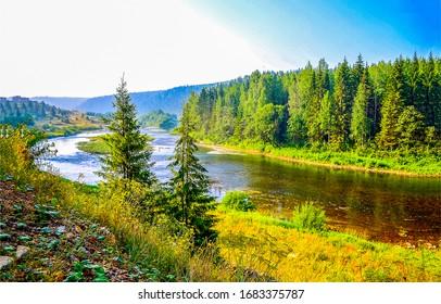 Forest river shore landscape view