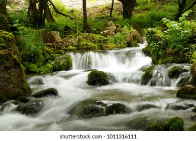 forest river with small waterfall