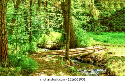 Forest river stream bridge view. Bridge stream in forest. Forest stream bridge. Forest stream view