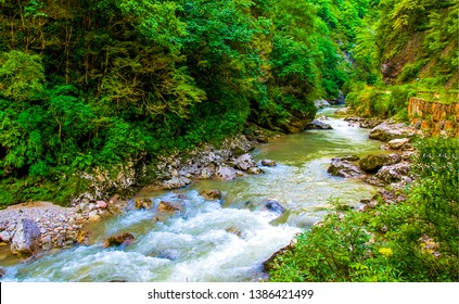 Forest river stream flow view. Deep forest river waterfall stream. Forrest river waterfall scene. Forest river flowing