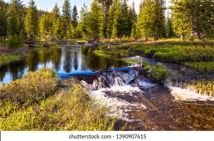 Forest river stream landscape view. Forrest river view. River stream in deep forest. Forest river landscape