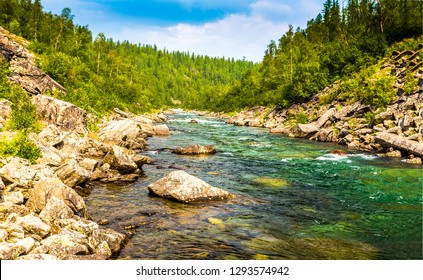 Forest river water landscape. Mountain forest river view. Forest river in mountains. Mountain river water flow