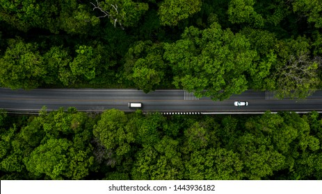 Forest Road, Aerial view over tropical tree forest with a road going through with car.