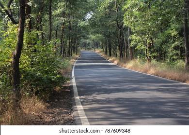 Forest Road, Barvi Dam, Badlapur - Shutterstock ID 787609348