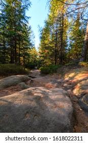 Forest road with big stone in Broumovske steny, Adrspach rocks, Czech republic - Shutterstock ID 1618022311