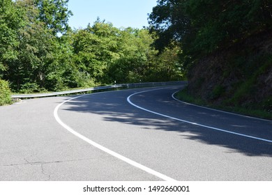 forest road curve in Eifel forest