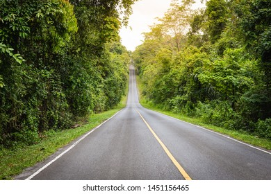 Forest road at dense trees on both sides in Khaoyai National Park (The World Heritage of nature) Thailand