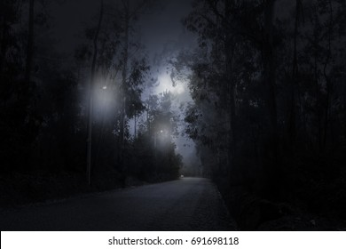 Forest road in a foggy and overcast full moon night