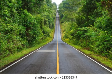 Forest road at Khaoyai National Park (The World Heritage of nature) Thailand