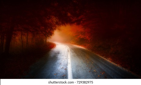 forest road leading to light through a dark red autumn forest