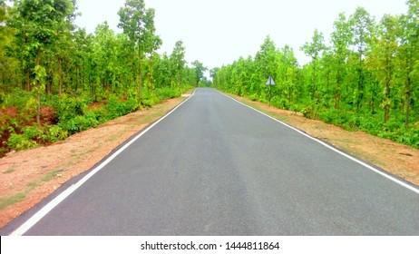 forest road tree cen wellpaper