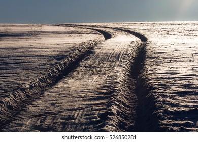 forest roads in winter