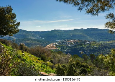 Forest of Sataf west of Jerusalem. A beautiful area of hiking and enjoying the nature.