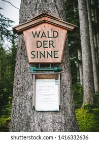 Forest of Senses (Wald der Sinne), educational walk in Altenberg. Styria, Austria, May 20, 2019.