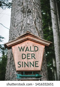 Forest of Senses (Wald der Sinne), educational trial in Altenberg. Styria, Austria, May 20, 2019.
