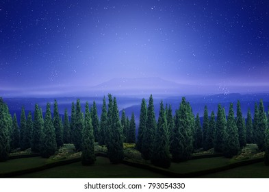 forest silhouette in the dark night sky with mountain view