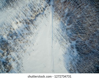 Forest ski path aerial winter top view