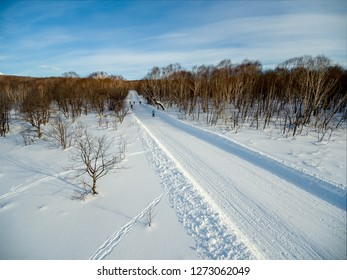Forest ski path low height aerial view