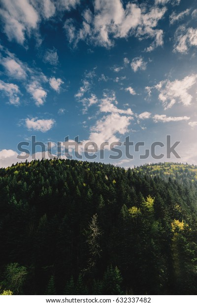 Forest sky and clouds Macedonia