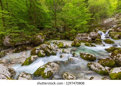Forest stream in Alps mountains at spring, long exposure