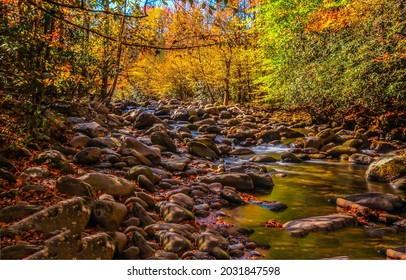 Forest stream in autumn landscape. Autumn forest creek. Autumnal background. Autumn forest stream - Shutterstock ID 2031847598