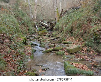 Forest stream flowing in canyon among rocks, grassy slopes