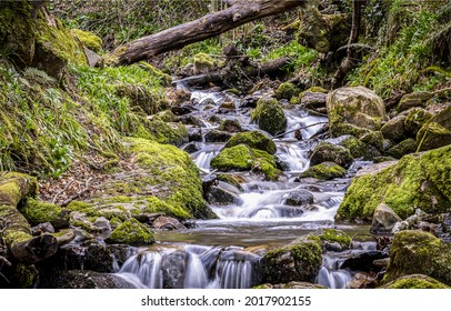 A forest stream flows over mossy stones. Mossy rocks river stream flow. Flow in mossy forest