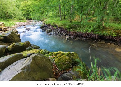 forest stream with rocky shore in summer. beautiful nature scenery. moss on the boulders. long exposure in day time