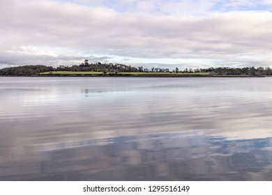 Forest , trees reflection and Lake in Strangford lough, Northern Ireland, UK