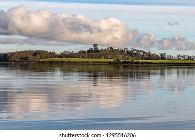 Forest , trees reflection and Lake at sunset in Strangford lough, Northern Ireland, UK