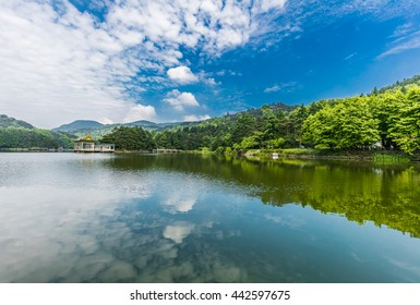 Forest under the blue sky around the mountain lake, pavilion in the quiet lake reflection formed in the world natural heritage Mount Lushan