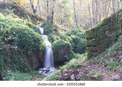 forest village alps norway